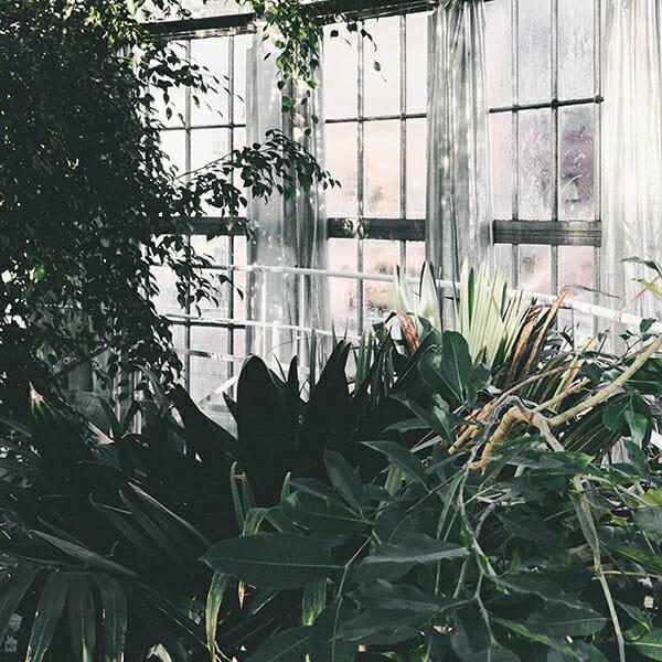Brautkleid für Hochzeit im Botanischen Garten Berlin